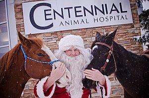 Centennial Animal Hospital